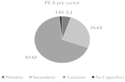 PEA por sector